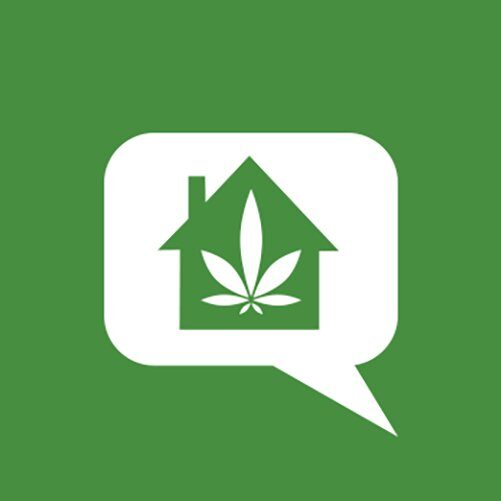 Weed Shops